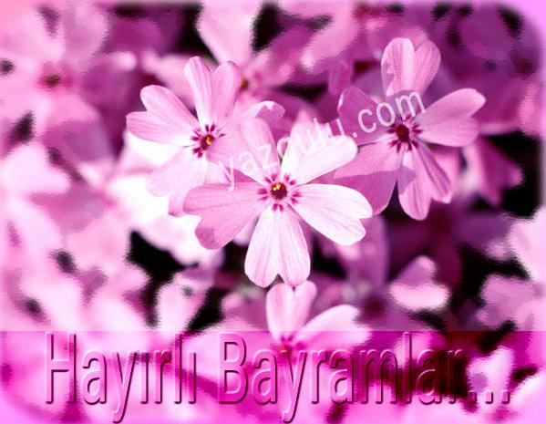 bayram9