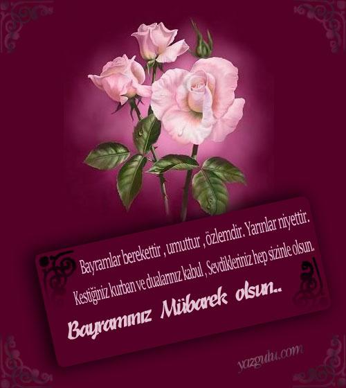 kurbanbayrami2
