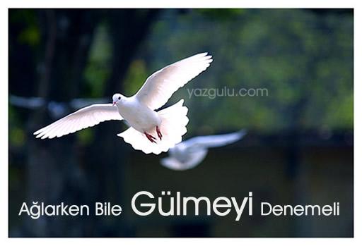 yazgulu.com